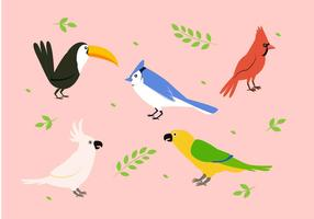 Bird Clipart Set Vector Illustration