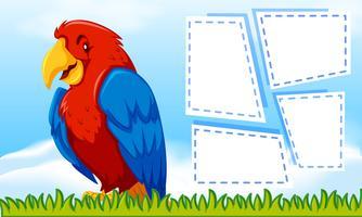 oiseau avec un cadre vecteur