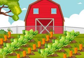 Toppa vegetale in una fattoria