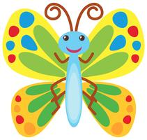 Butterfly with colorful wings