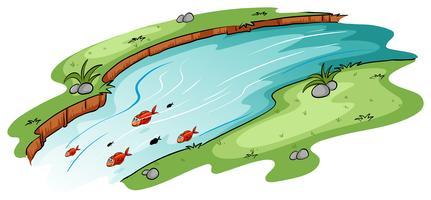 Een rivier met een school vissen