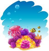 Cena subaquática com água-viva e corais