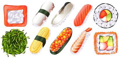 Set de sushi sobre fondo blanco