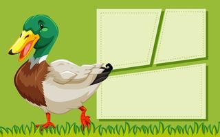 Duck green frame template vector