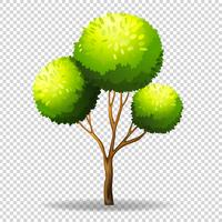 Gree tree on transparent background vector
