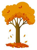 Dry leaves falling off the tree vector