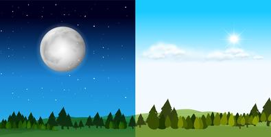 Day time and night time scene