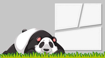 A panda on blank banner