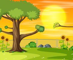 Pôr do sol na cena do parque
