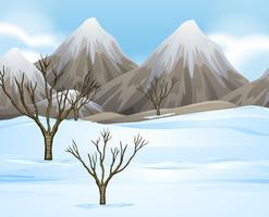 Aardscène met sneeuw ter plaatse