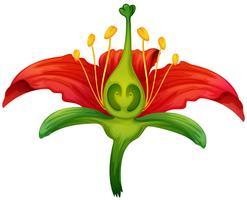 Blumenteile