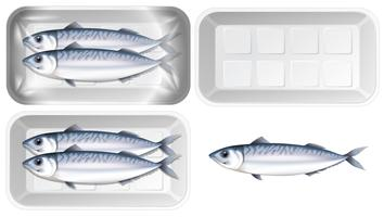 Set of mackerel in package