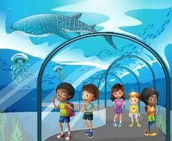 Niños mirando peces en acuario