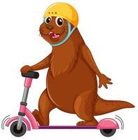 Otter playing kick scooter