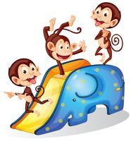 Macacos e slide