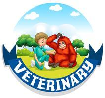 Untersuchen Sie Urangutan des Tierarztes im Park