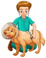 Vet examining pet dog vector