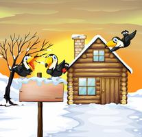 Log home and toucans in winter snow