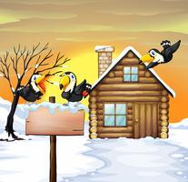 Log casa e tucanos na neve do inverno