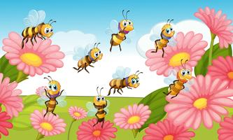 Bees flying in the flower garden