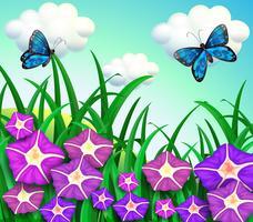 En trädgård på kullen med lila blommor