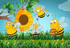 Vier Bienen fliegen um den Bienenstock
