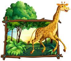 Giraff springar i skogen
