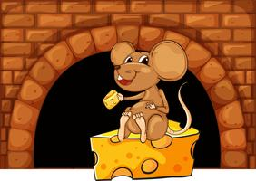 Mouse eating cheese in the house