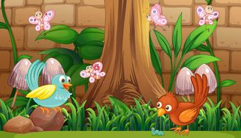 Uccelli e farfalle in giardino