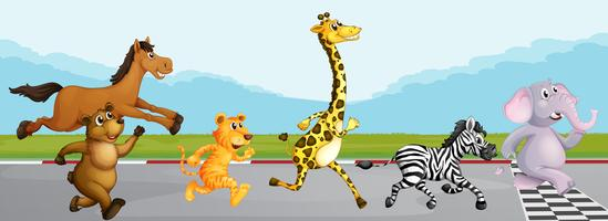 Wild animals running in race