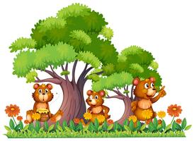 Three little bears in the garden