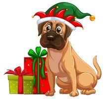 Chien et cadeaux de Noël