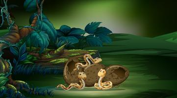 Escena del bosque con tres serpientes incubando huevos.