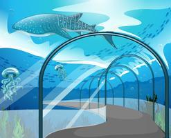 Escena de acuario con animales marinos.