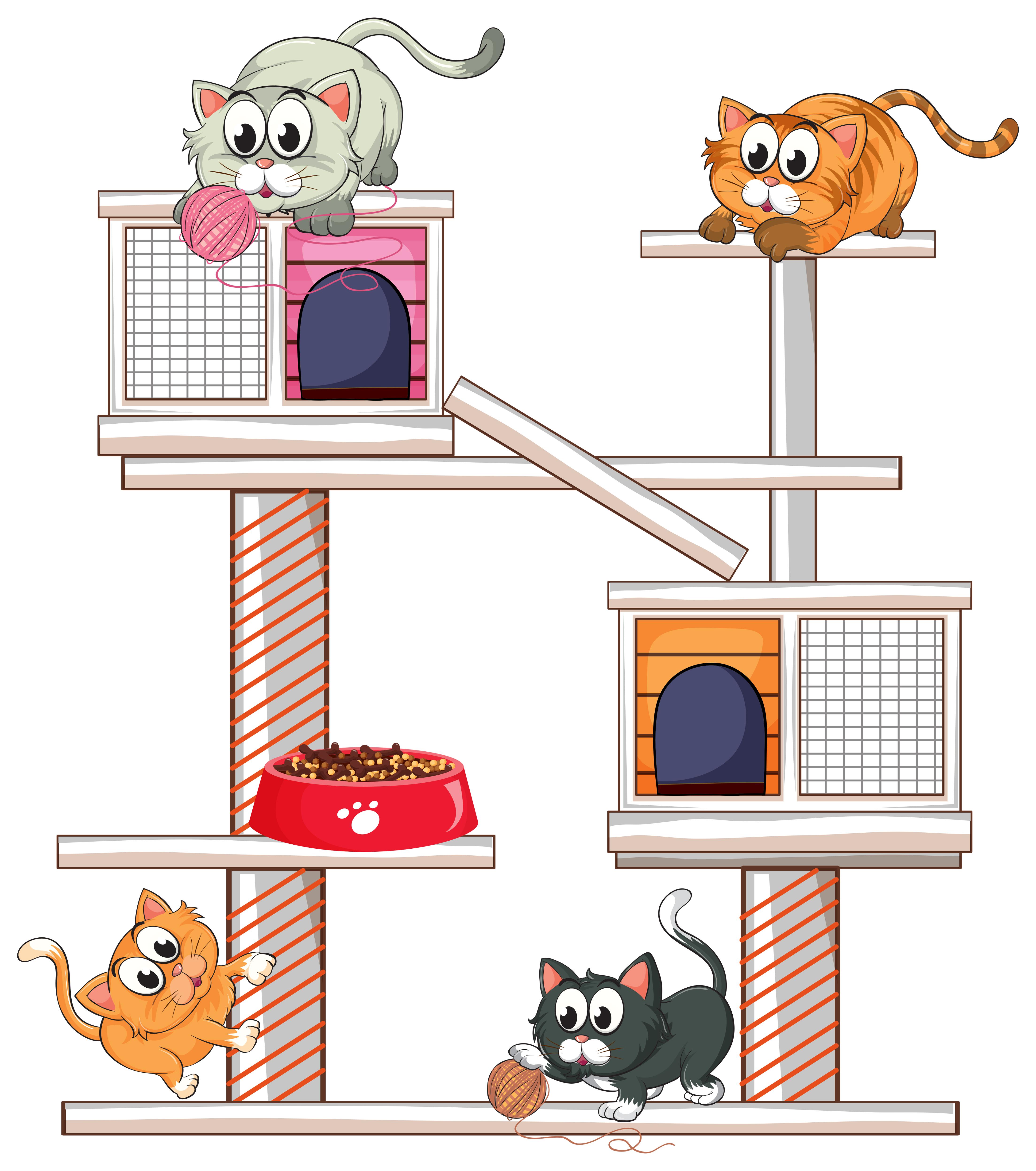 Rete Per Gatti Condominio gatti che giocano sul condominio per gatti - scarica
