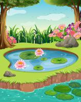Petit étang au bord de la rivière dans la forêt