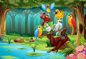 Vilda djur i skogen