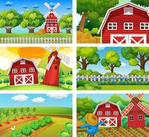 Six different scenes of farm