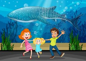 Family and killing whale in aquarium