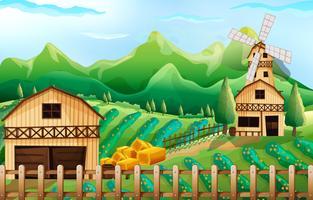 Landbouwgrond met schuur en windmolen