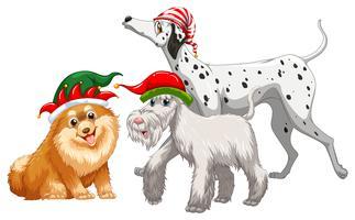 Tema navideño con tres perros en sombrero de fiesta.