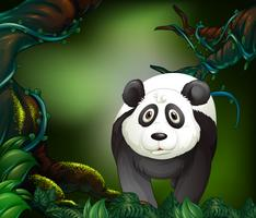 Panda in a rain forest vector