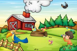 Farm scen