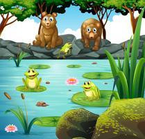 Deux ours et trois grenouilles à l'étang