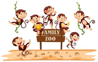 Many monkeys on zoo sign