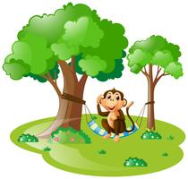 Apa sitter på hängmatta i skogen