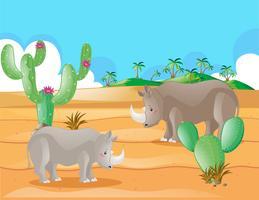 Rinoceronte in piedi nel deserto