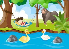 Kid sleeping in the jungle
