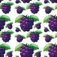 Seamless background with blackberries vector