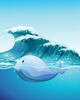 Dolphine nadando sob o mar